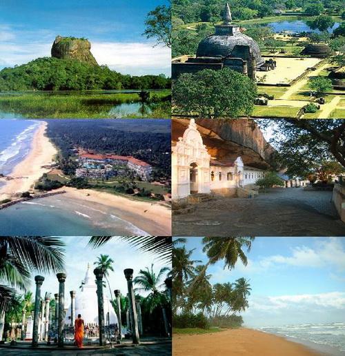 ekzo_Shri-Lanka.JPG