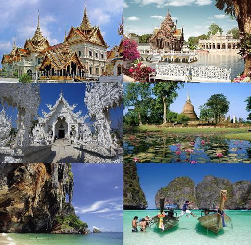 ekzo_Thailand.jpg